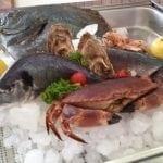 l'esposizione del pesce